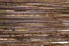Horizontal background of old dry wood branches royalty free stock photography