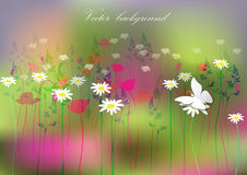 Horizontal background wild flowers and butterflies.vector illustration Stock Image