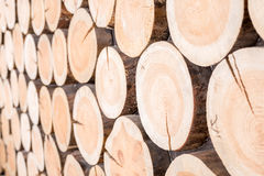 Horizontal background of wood logs of different sizes Stock Images