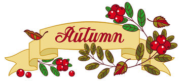 """Horizontal banner with cranberries and artistic written word """"Autumn"""". Horizontal banner with cranberries and artistic written word """"Autumn"""". Raster Stock Images"""