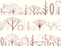 Horizontal banner of different types of inflorescence. Royalty Free Stock Image