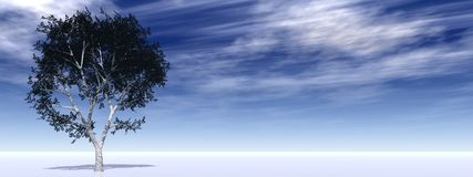 Horizontal banner with an isolated tree on horizon. High resolution banner with a tree on horizon rendered at maximum quality Stock Images