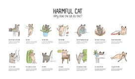 Horizontal banner with naughty cat doing various things - stealing food, scratching furniture, gnawing wires, throwing. Off items. Bad behavior of domestic stock illustration