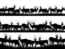 Horizontal banner silhouettes of herd of antelope in African sav Stock Photography