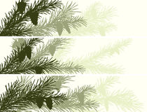 Horizontal banner of spruce branch. Royalty Free Stock Image