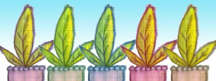 Horizontal banner of three-leaf plants Stock Photos