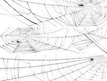 Horizontal banner of web of spider. Vector horizontal banner of silhouette of web of spider, isolated on white Royalty Free Stock Photo