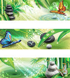 Horizontal banners with background of a SPA Royalty Free Stock Images
