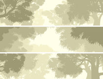 Horizontal banners crown of trees against the sky. Stock Images