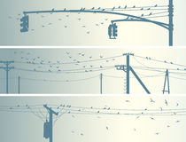 Horizontal banners of flock birds on city power lines. Set of horizontal banners with birds on power line in pale tone Royalty Free Stock Photography