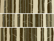 Horizontal banners forest with trunks tree. Royalty Free Stock Image
