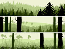 Horizontal banners of hills coniferous wood. Horizontal abstract banners of hills of coniferous wood in green tone Royalty Free Stock Photography