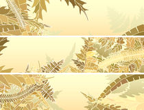 Horizontal banners of many different grass. Stock Photo