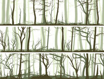 Horizontal banners with many tree trunks. Stock Photos