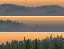 Horizontal banners of misty coniferous wood. Royalty Free Stock Images