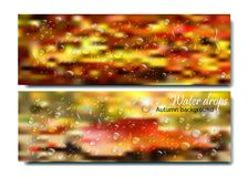 Horizontal Banners Set with Water Drops on the autumn background.Vector beautiful concept of autumn rainy window with Stock Image