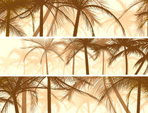 Horizontal banners silhouettes of palms. Royalty Free Stock Image
