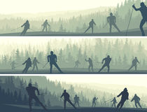 Horizontal banners of skiers in hills coniferous forest. Stock Photography