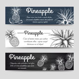 Horizontal banners template with pineapple Stock Images
