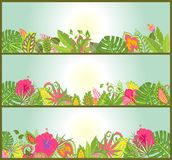 Horizontal banners with tropical flowers Royalty Free Stock Images