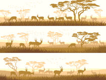 Horizontal banners of wild animals in African savanna. Horizontal abstract banners of herd antelope in African savanna with trees Stock Illustration