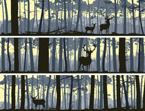 Horizontal banners of wild animals in wood. Stock Image