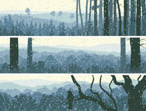 Horizontal banners of winter wood. Stock Images