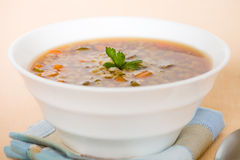 Horizontal barley beef soup Royalty Free Stock Photography