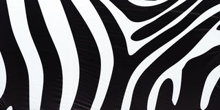 Horizontal black and white zebra texture background Royalty Free Stock Image