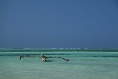 Horizontal bleu de mer Photo libre de droits