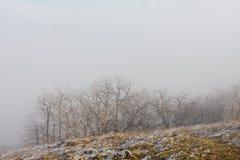 horizontal brumeux photographie stock
