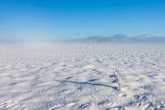 Horizontal brumeux de l'hiver Image stock