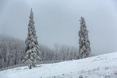 Horizontal brumeux de l'hiver Photo stock