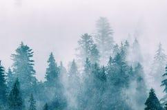 Horizontal brumeux de montagne image stock