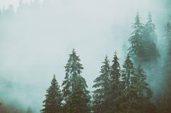 Horizontal brumeux de montagne images stock
