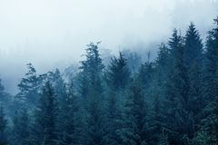 Horizontal brumeux de montagne photo stock