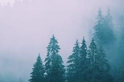 Horizontal brumeux de montagne photographie stock libre de droits