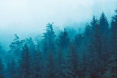 Horizontal brumeux de montagne photo libre de droits