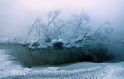 Horizontal calme de l'hiver Photo libre de droits