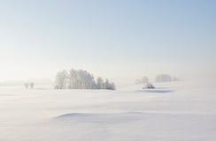 Horizontal calme de l'hiver Photos libres de droits