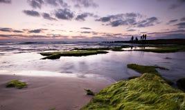 Horizontal calme de Medittereniansea avec des pêcheurs - horizontaux Photographie stock libre de droits