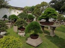 Horizontal chinois de jardin image stock