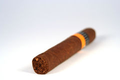 Horizontal Cigar. Cigar laying horizontal on a white background Stock Image