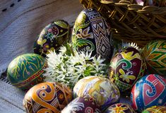 Easter eggs close-up with white flowers royalty free stock photo