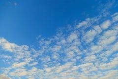 Horizontal clouds on a blue evening sky. Horizontal clouds on a blue sky Royalty Free Stock Photography