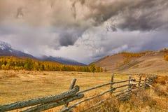 Horizontal coloré d'automne Photographie stock libre de droits