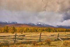 Horizontal coloré d'automne Photos libres de droits
