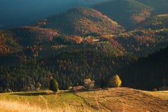 Horizontal coloré d'automne Photographie stock