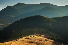 Horizontal coloré d'automne Image libre de droits