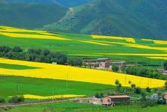Horizontal coloré de montagne Photographie stock libre de droits